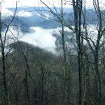 Appalachian Trail (12) – I LOVE TENNESSEE